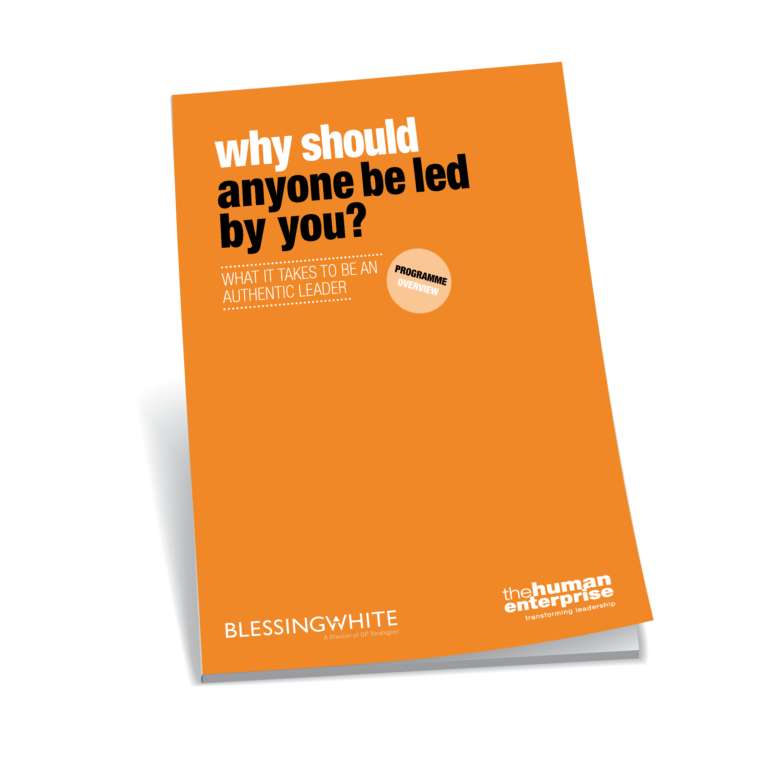 Why Should Anyone Be Led By You? Brochure | Leadership Development Sydney