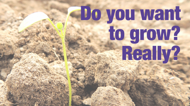 Do you want to grow? Really? | Leadership Development and Training Sydney, Australia