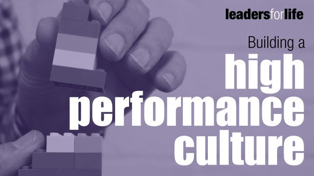 High Performance Culture | Leadership Training | the human enterprise